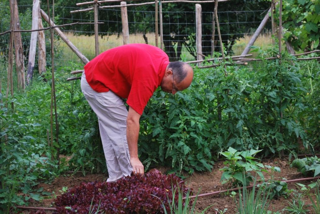 Il lavoro nell'orto